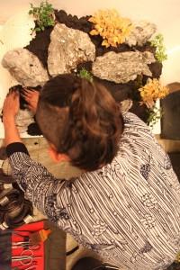 bonsai-w-140508-13